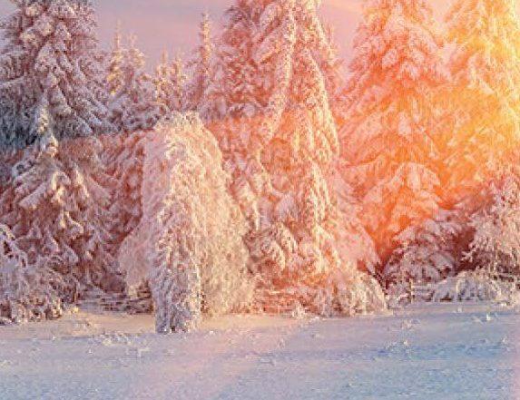 Winterbrochure evenementen
